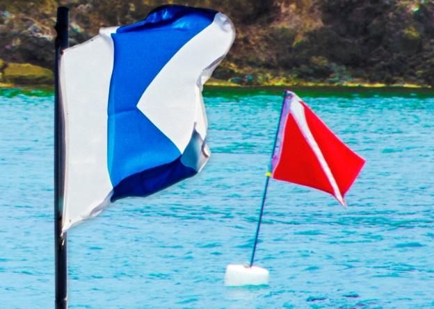 Resultat d'imatges de bandera buzo